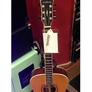 Parkwood PW320M Acoustic Guitar