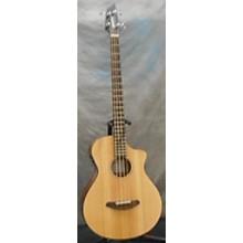Breedlove Passport Bass Acoustic Bass Guitar