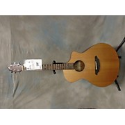 Breedlove Passport C250/CME Acoustic Electric Guitar