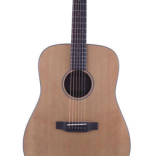 Breedlove Passport D/SM Acoustic Guitar