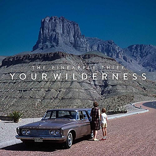 Alliance Pineapple Thief - Your Wilderness (Picture Disc)