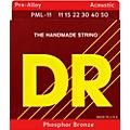 DR Strings Pre-Alloy Phosphor Bronze Acoustic Guitar Strings Medium Lite  Thumbnail