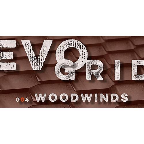 Spitfire Producer Portfolio: EVO GRID 4-thumbnail