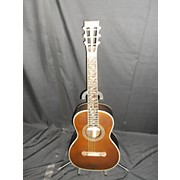 Washburn R320SWRK Acoustic Guitar