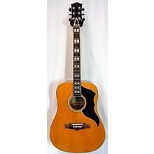 EKO RANGER VI VR Acoustic Electric Guitar