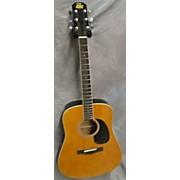 RD80 Acoustic Guitar