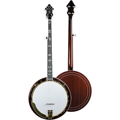 Recording King RK-R82 Professional Banjo with Gold Hardware