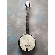 Recording King RKOT25BR OT25 Madison Old Time Banjo