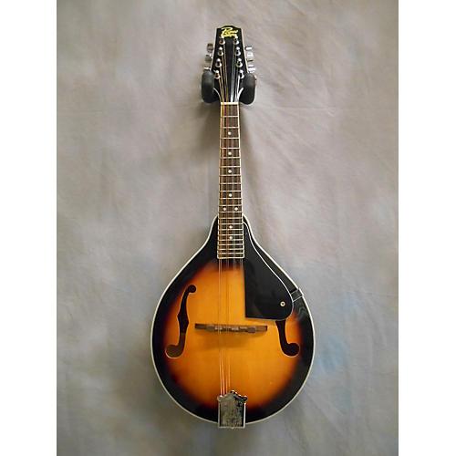 Rogue RM100A A Style Mandolin