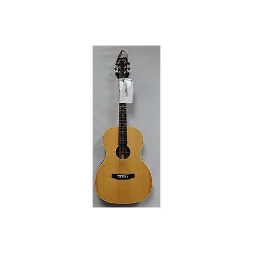 Recording King ROSA9M Acoustic Guitar