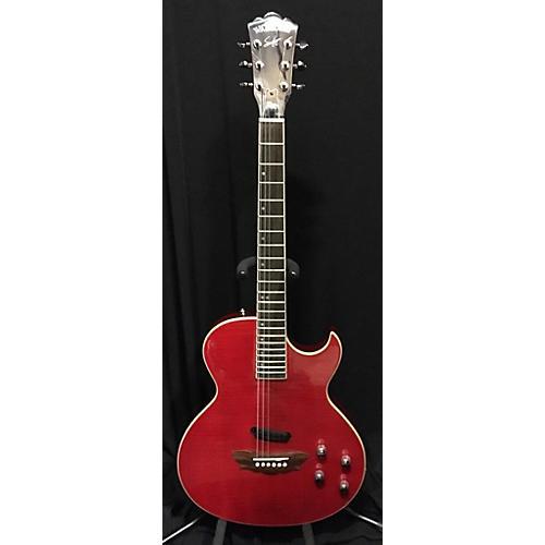 Washburn RR100 SAM HAGGAR Hollow Body Electric Guitar