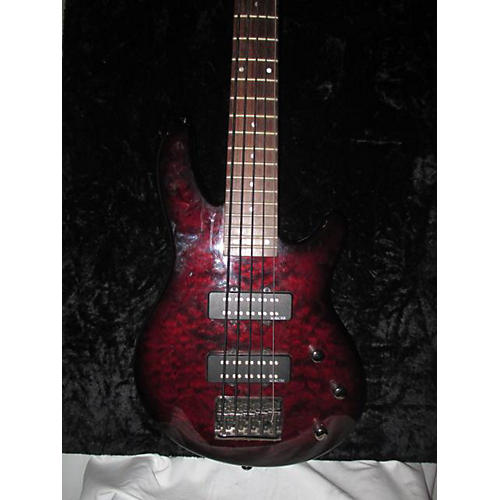 Schecter Guitar Research Raiden Special 5 String Electric Bass Guitar