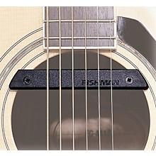 Fishman Rare Earth Pro-Rep-102 Humbucking Soundhole Pickup Level 1