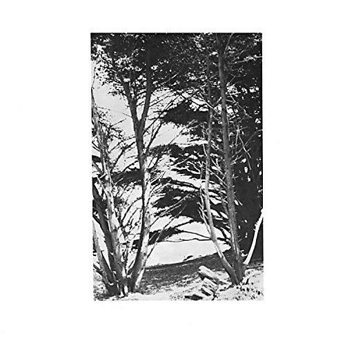Alliance Rick Deitrick - Gentle Wilderness