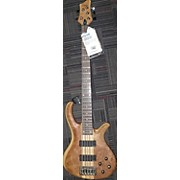 Schecter Guitar Research Riot 5 Electric Bass Guitar