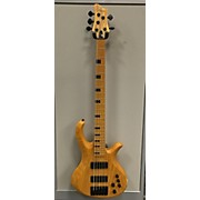 Schecter Guitar Research Riot 5 Session Electric Bass Guitar