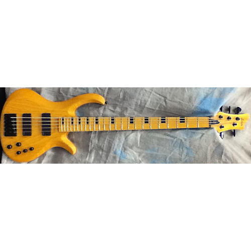 Schecter Guitar Research Riot 5 Sessions Electric Bass Guitar