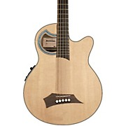 RockBass by Warwick RockBass Alien Deluxe 5-String Acoustic-Electric Bass Guitar