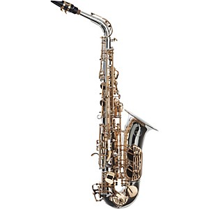 Click here to buy Sax Dakota SDA-1000 SP Professional Alto Saxophone.