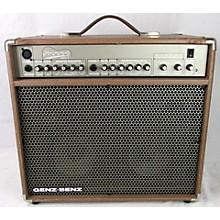 Genz Benz SHENANDOAH 60 Acoustic Guitar Combo Amp