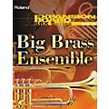 Roland SRX-10 Big Brass Ensemble Expansion Board thumbnail