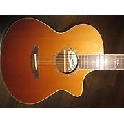 Breedlove STUDIO J350CR Acoustic Electric Guitar