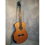 Breedlove Sc20/my Acoustic Guitar