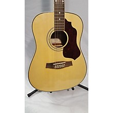 Ibanez Sgt112 12 String Acoustic Guitar