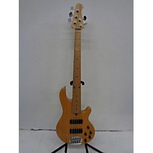 Lakland Skyline 55-01 Electric Bass Guitar