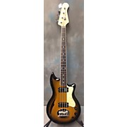 Lakland Skyline Hollowbody Electric Bass Guitar
