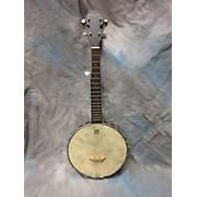 Johnson Small 5str Banjo Banjo
