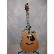 Breedlove Stage D25/SR Acoustic Electric Guitar