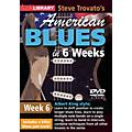 Licklibrary Steve Trovato's American Blues in 6 Weeks (Week 6) Lick Library Series DVD Performed by Steve Trovato thumbnail