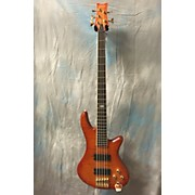 Schecter Guitar Research Stiletto Elite 5 String Electric Bass Guitar