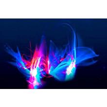 Matt Sorum's Drum Art Stone Fish by SceneFour