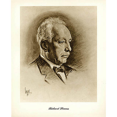 Music Sales Strauss (Lupas Small Portrait Poster) Music Sales America Series