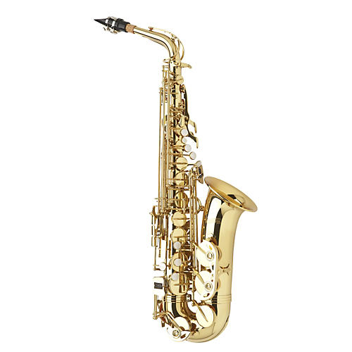 Giardinelli Student Alto Saxophone Outfit Lacquer
