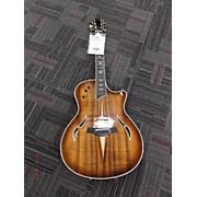 Taylor T5-C2 Custom Hollow Body Electric Guitar