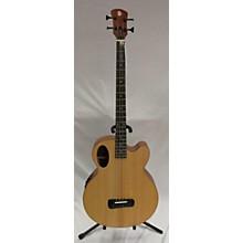 Spector TB4 Acoustic Bass Guitar
