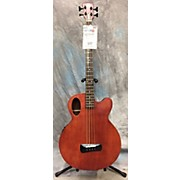 Spector TIMBRE Acoustic Bass Guitar