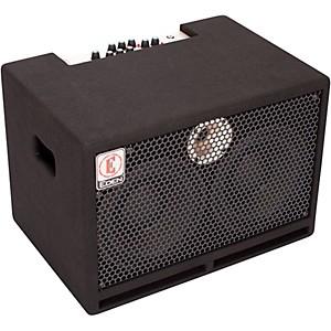 Eden TN2252 225 Watt 2x10 Bass Combo Amp