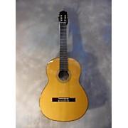 Pavan TP20L Nylon String Acoustic Guitar