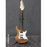 Warrior The Experience Solid Body Electric Guitar