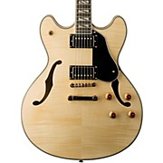 Washburn USM-HB35 Hollowbody Dual Humbucker Electric Guitar