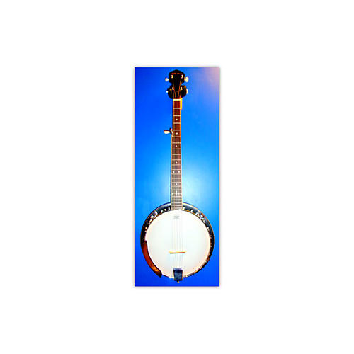In Store Used Used R. W. Jameson 5-STRING Brown Banjo-thumbnail