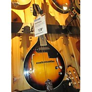 Used WECHTER SCHEERHORN Sunburst Resonator Guitar