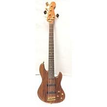 Fender Victor Bailey 5 String Jazz Bass Electric Bass Guitar