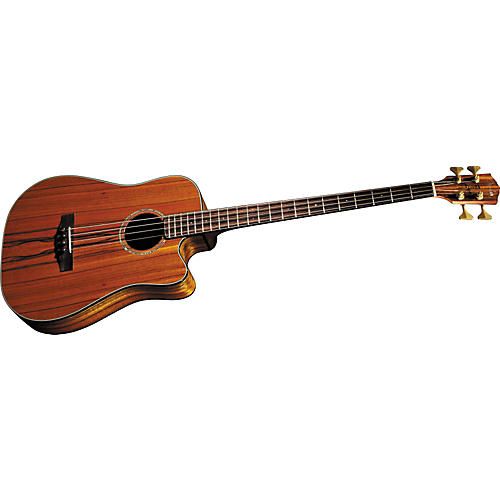 Fender Victor Bailey Signature Acoustic-Electric Bass-thumbnail