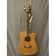 Washburn WD10CE Acoustic Electric Guitar