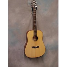 Washburn WD170SW Acoustic Guitar